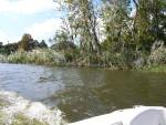 Going Through The Dead River.